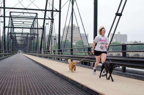 Dogs participate in the Harrisburg Pasta 5k Run
