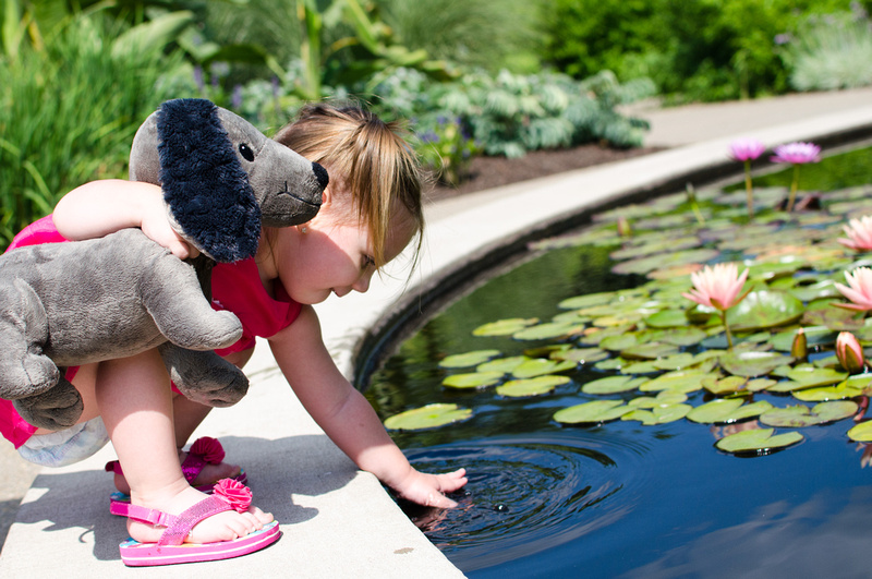 Little girl playing in the Lily Pond