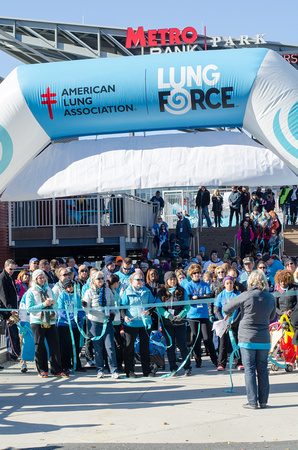 Lung Force Walk 2014 Harrisburg PA